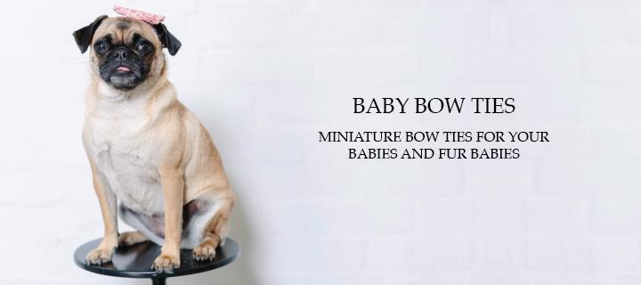 baby-botiews-banner-01.png